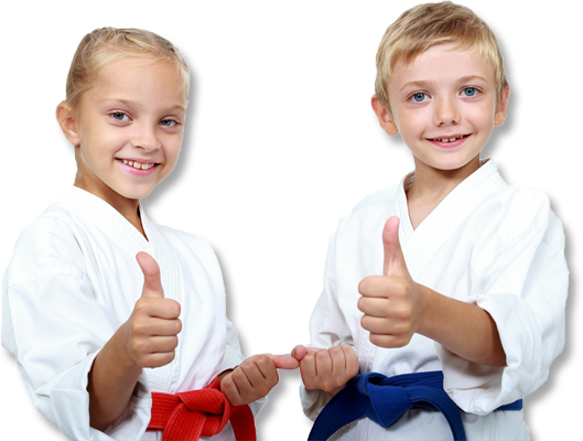 After school martial arts for kids in Homewood, IL